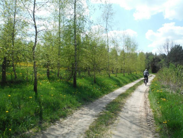 Rekowo - trasy rowerowe
