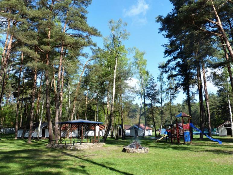 Polana, ul. Sosnowa