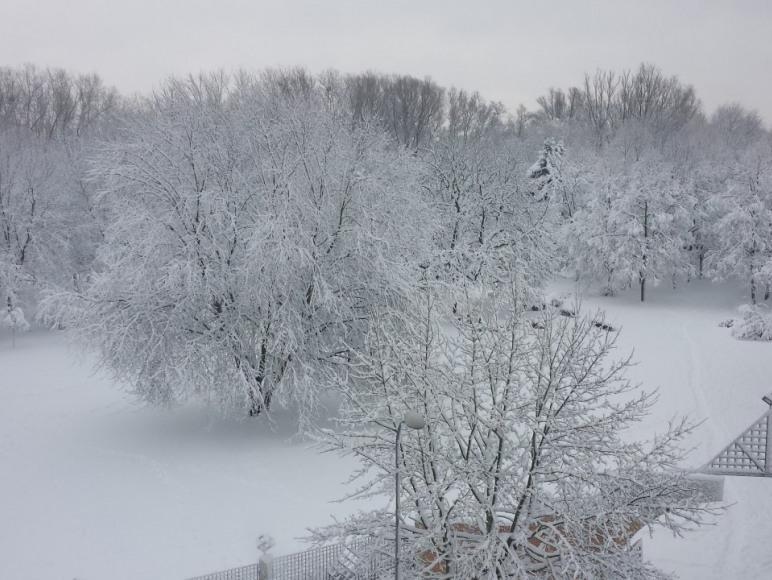 widok zima