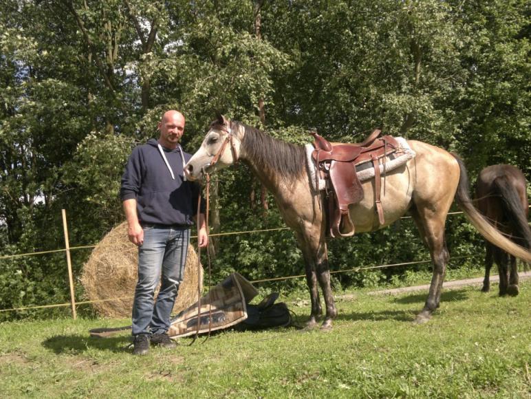 Zaprzyjażnione konie