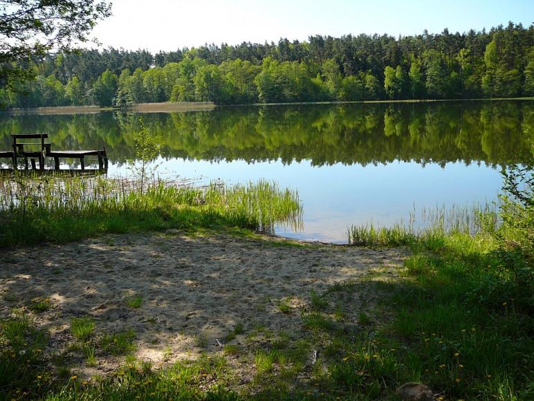 Leśne Jezioro Gospodarstwo Agroturystyczne