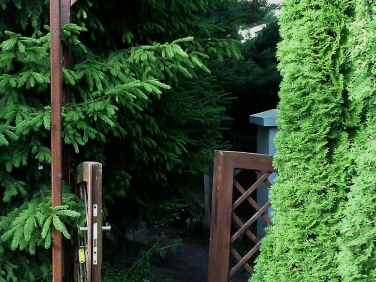 Wejście do ogrodu.