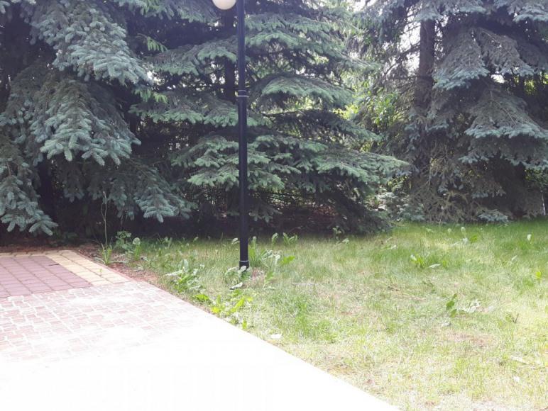 Samodzielny, ogrodzony dom nad jeziorem Ługowskim