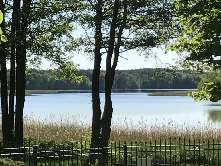 widok na jezioro z domków