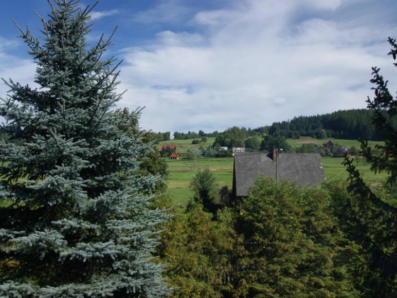 Pokoje Gościnne Hubert - widok z okna