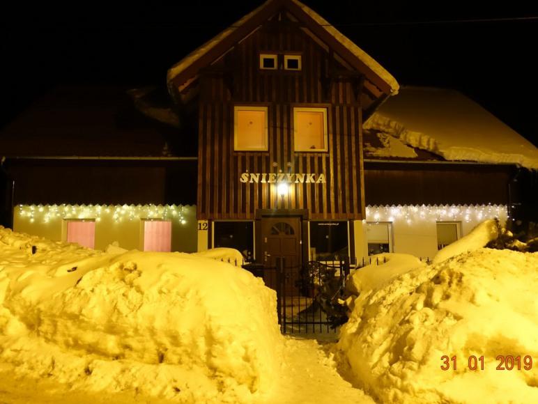 Śnieżynka nocą