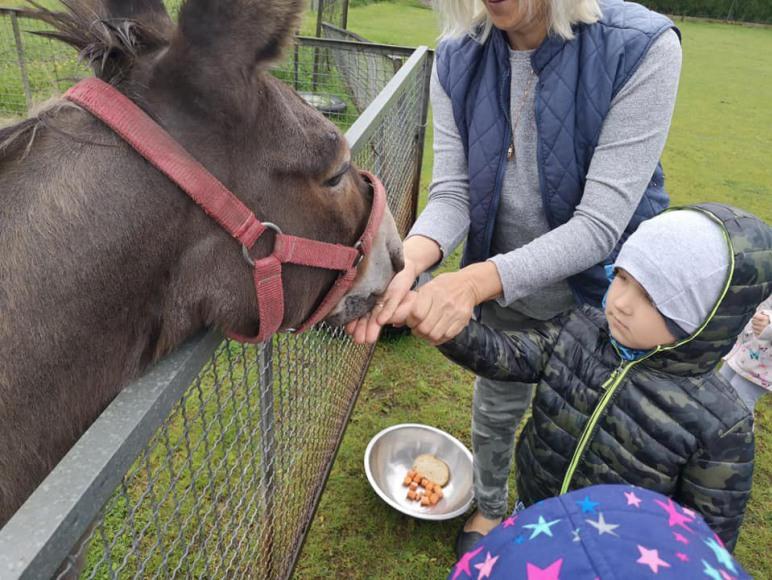 Agroturystyka Mustang Ostrołęka