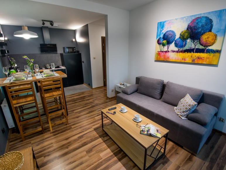 Apartament Kustronia