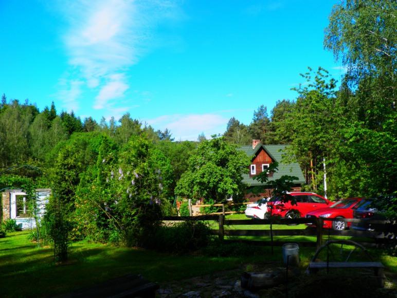ogród , parking