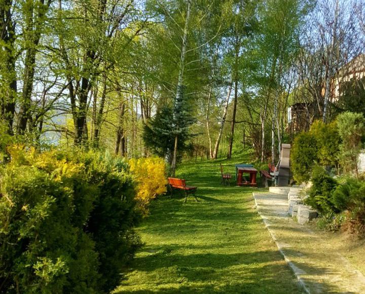ogród z grilem