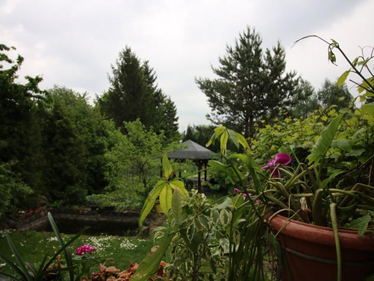 Ogród. Miejsce na grilla.