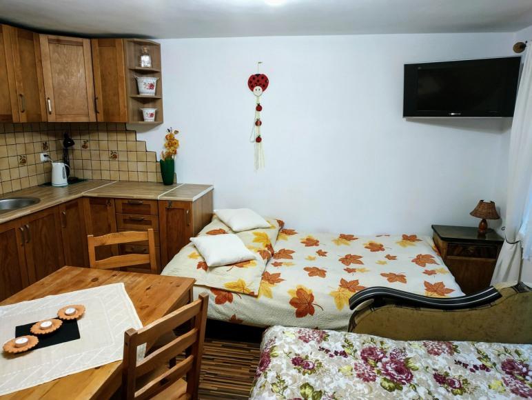 duży pokój - sypialniany z aneksem 2-4 os.