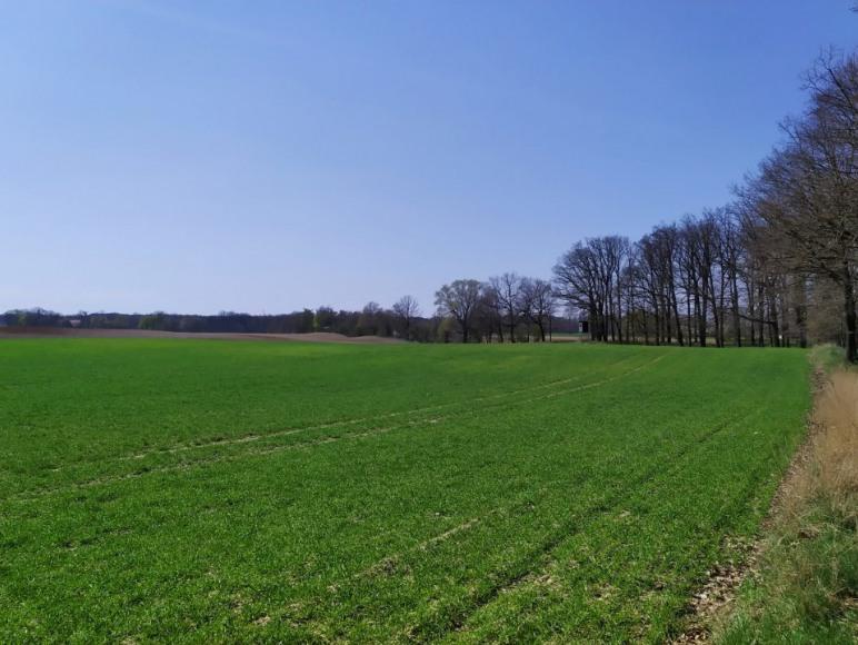 Gospodarstwo Agroturystyczne Konfiturka