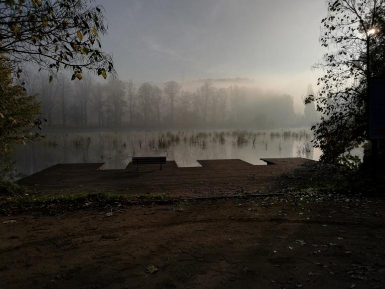 widok Nectar Pond
