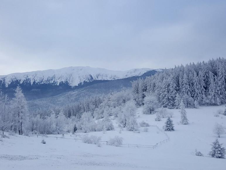 widok Babiej Góry