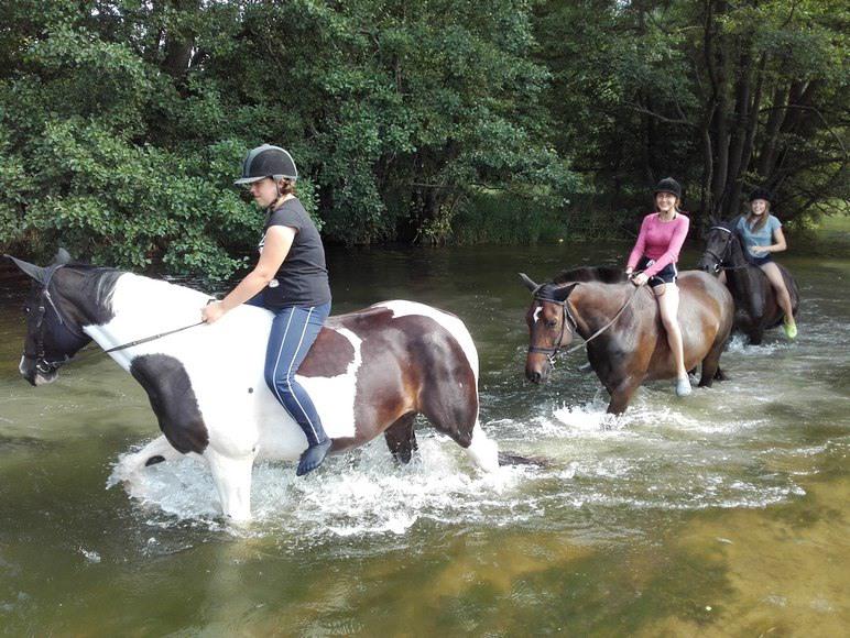 Pławienie koni w rzece Wdzie