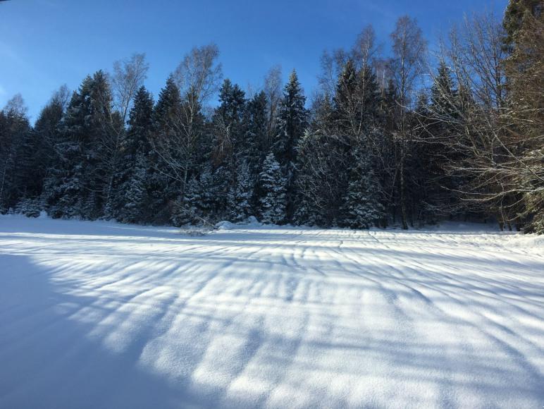 Widok zimowy - Apartament 2