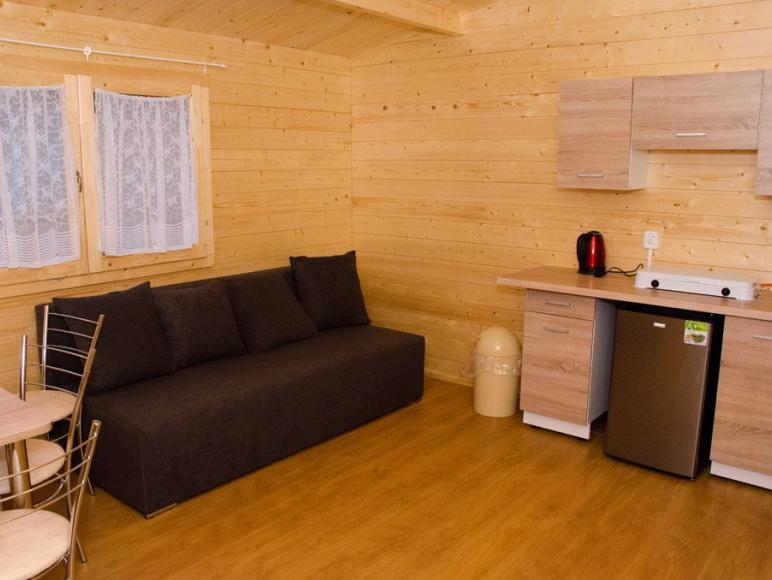 Salon domku z rozkładanym łóżkiem