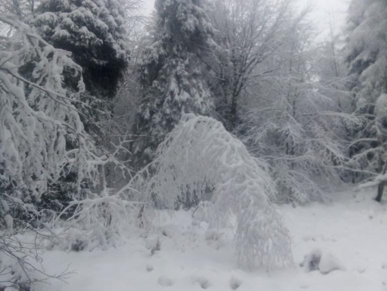 Zima pod Klimoską
