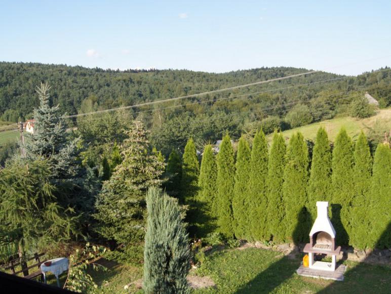 Leśna Chata- okolice Energylandii wolne od 28 sier