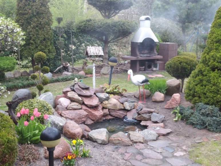 Oczko wodne - w ogrodzie