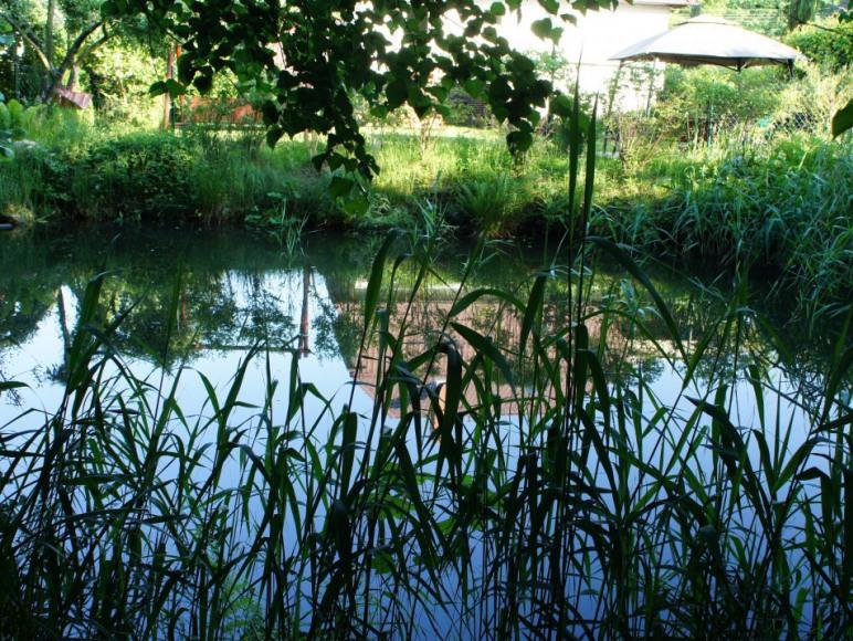 widok od strony Parku Krajobrazowego.