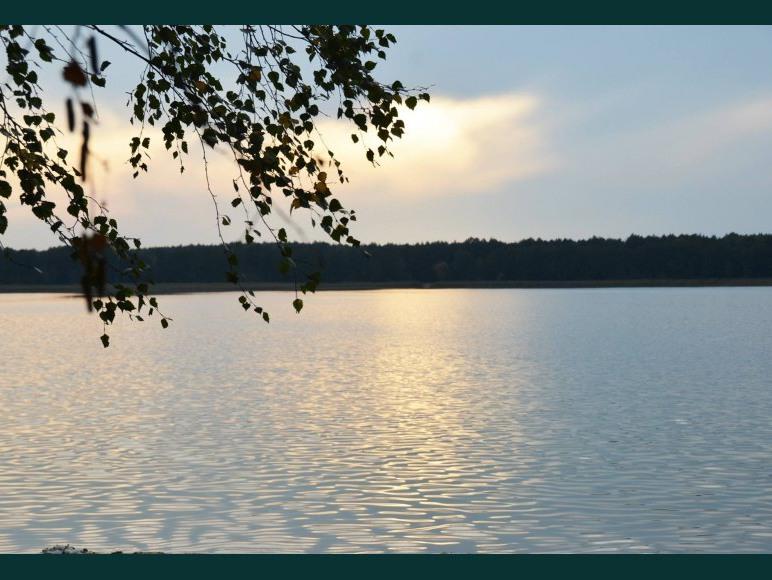 Siedlisko Poleski Zakątek nad jeziorem Zagłębocze