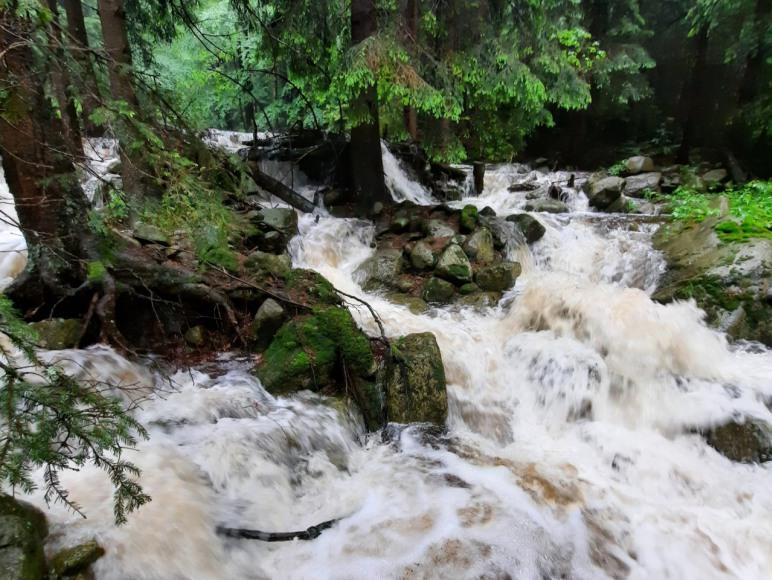 Dworek nad potokiem