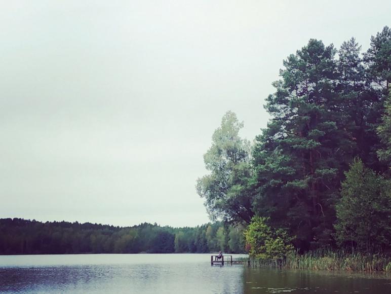 Leśna Odskocznia