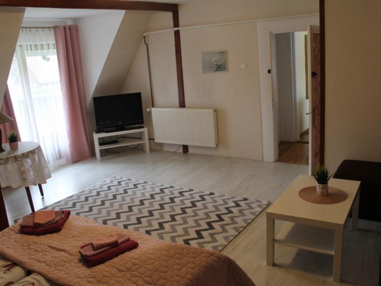 Apartament - salon/sypialnia