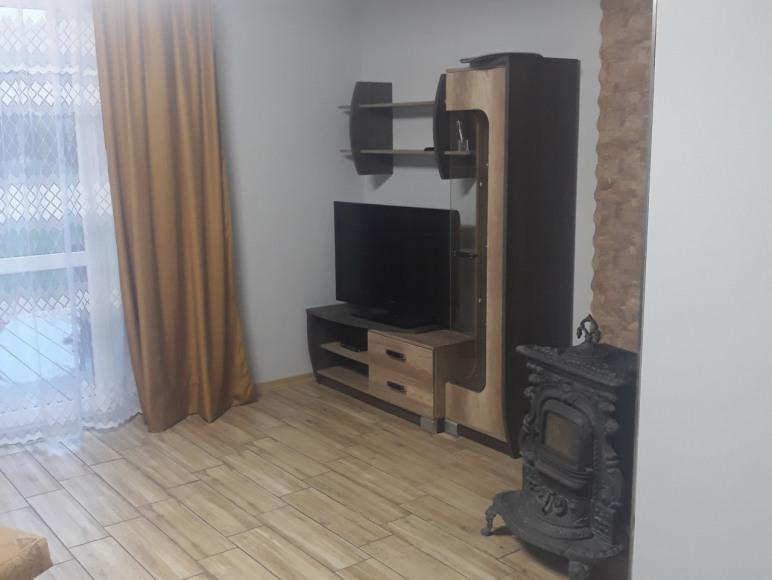 Dom - salon z kominkiem i TV