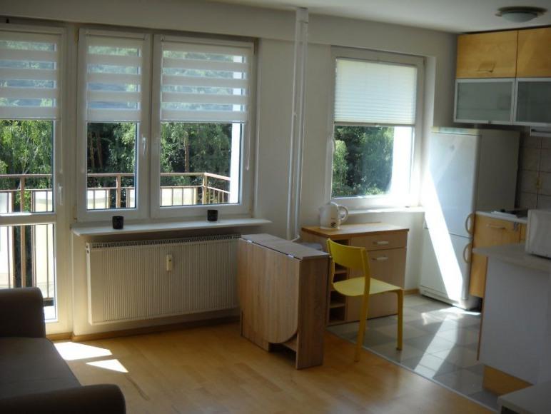 Apartament z widokiem na las