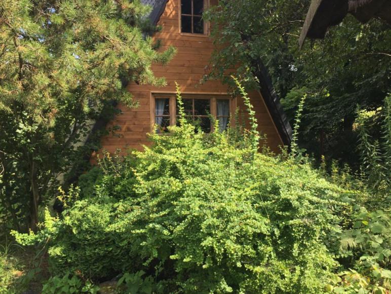 Domek u Ewy