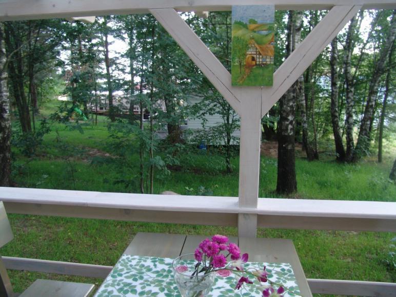 widok z tarasu w domku1