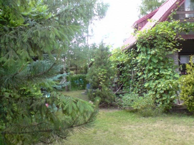 Samodzielny, ogrodzony dom nad zalewem Sulejowskim