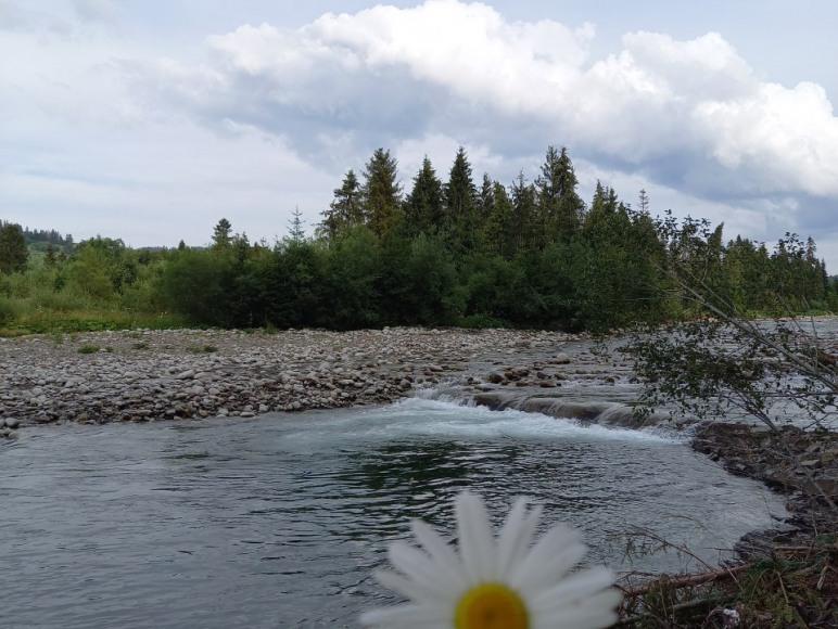 Rzeka Białka