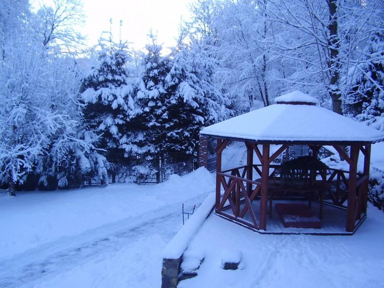 Widok zimowy na altanę