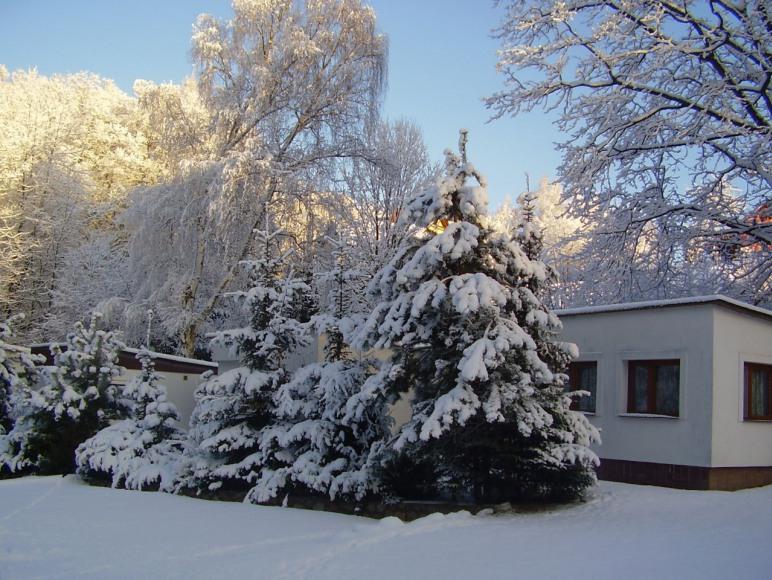 Widok zimowy na domek
