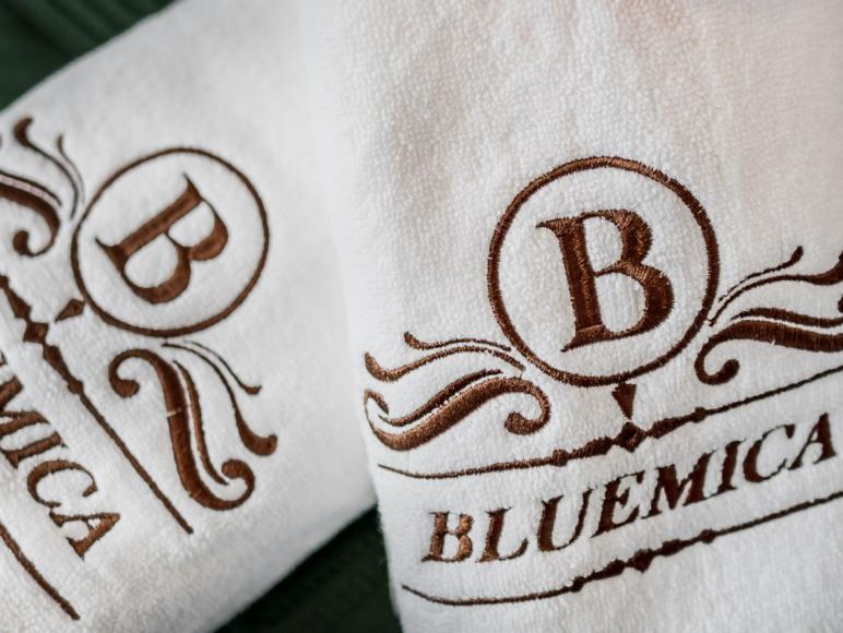 Villa Bluemica