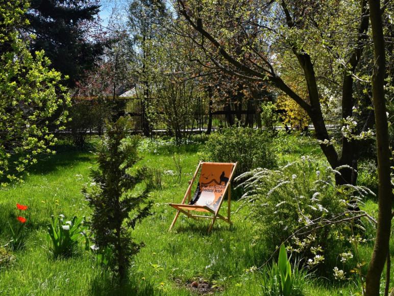 Przestronny ogród