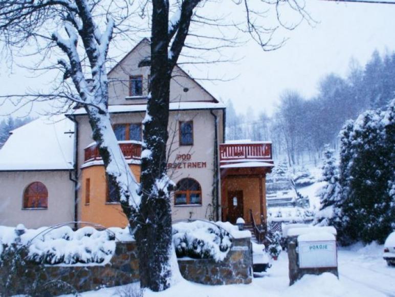 Willa zimą