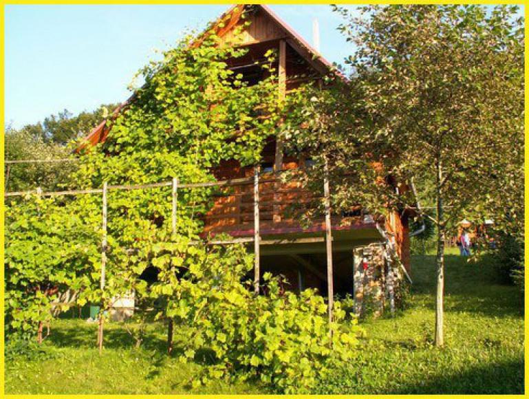 Ośrodek Szkoleniowo/Wczasowy Zielona Polana