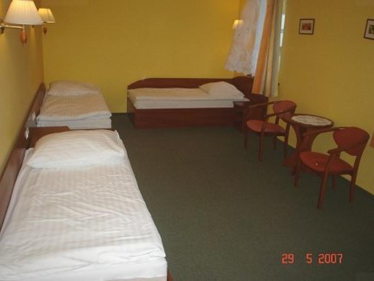 Hotel Przylesie