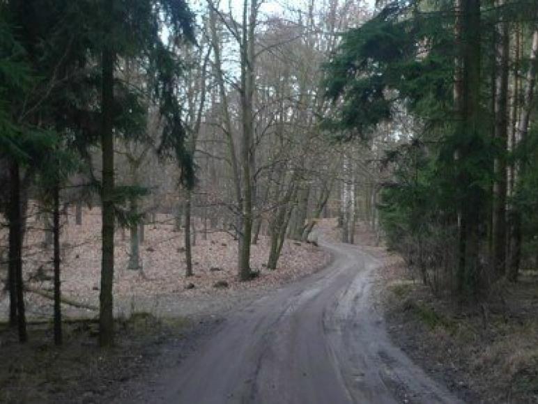 Agro-Zielonka