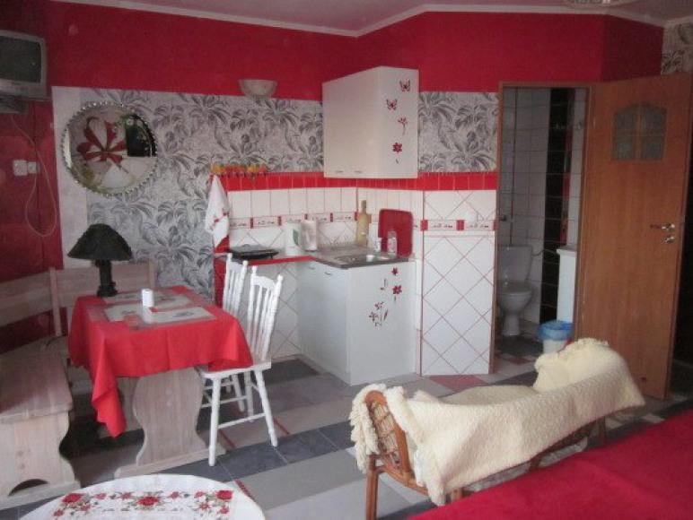 apartament czerwony -aneks kuchenny
