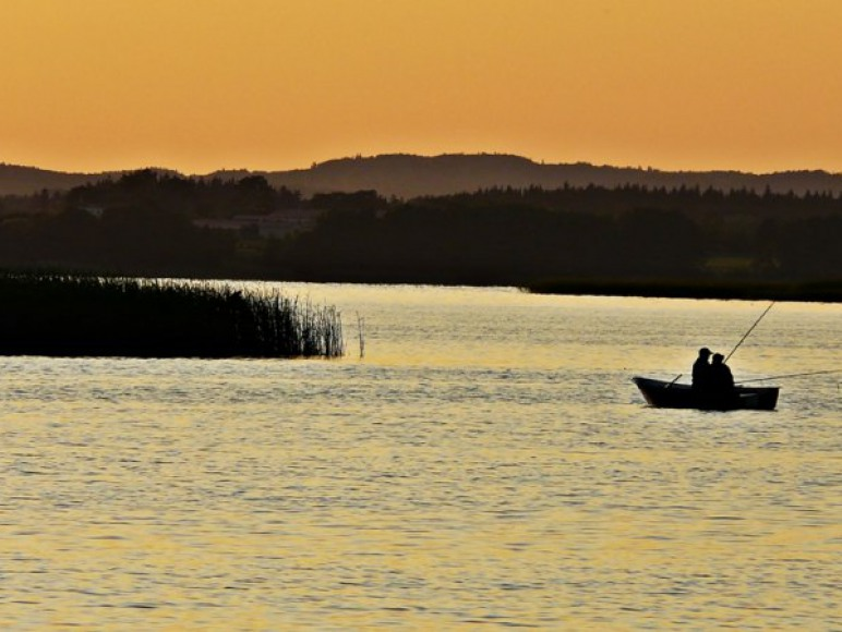 Połów ryb o świcie.