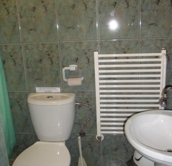 Prysznic, wc, umywalka, miska, papier toaletowy, odświeżacz, ścierki, płyny