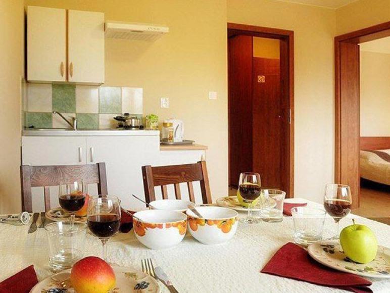 Aneks kuchenny w apartamenie 2-pokojowym