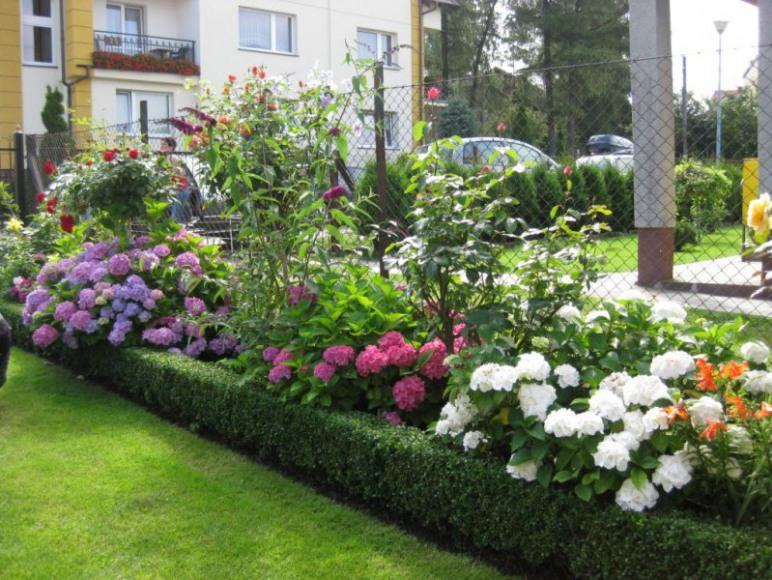 Ogródek wypoczynkowy