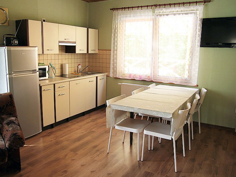 apartament 6-osobowy - aneks kuchenny